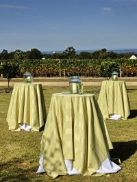 Citrus Stripe table linen hire