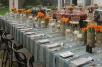 Majorca Stripe table linen hire